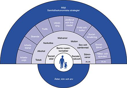 faktorer som påverkar folkhälsan